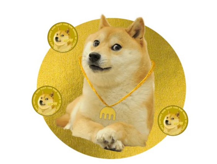 What is Dogecoin? (DOGE)   SinceCoin